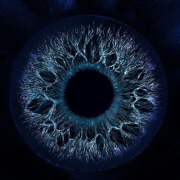 Точка зору