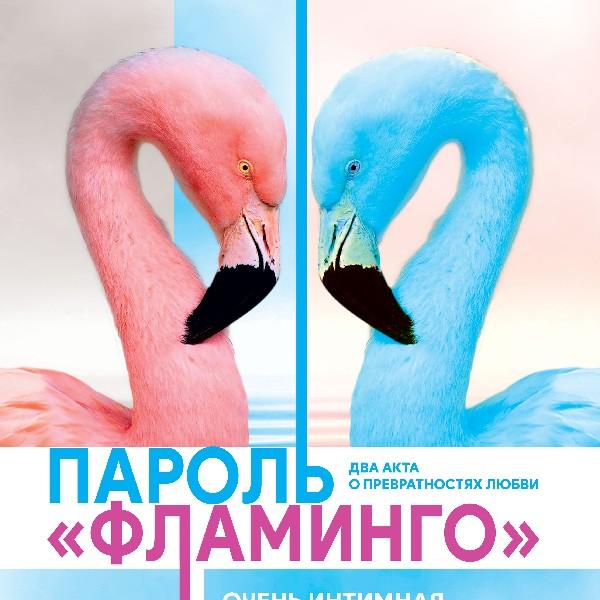 Пароль Фламинго