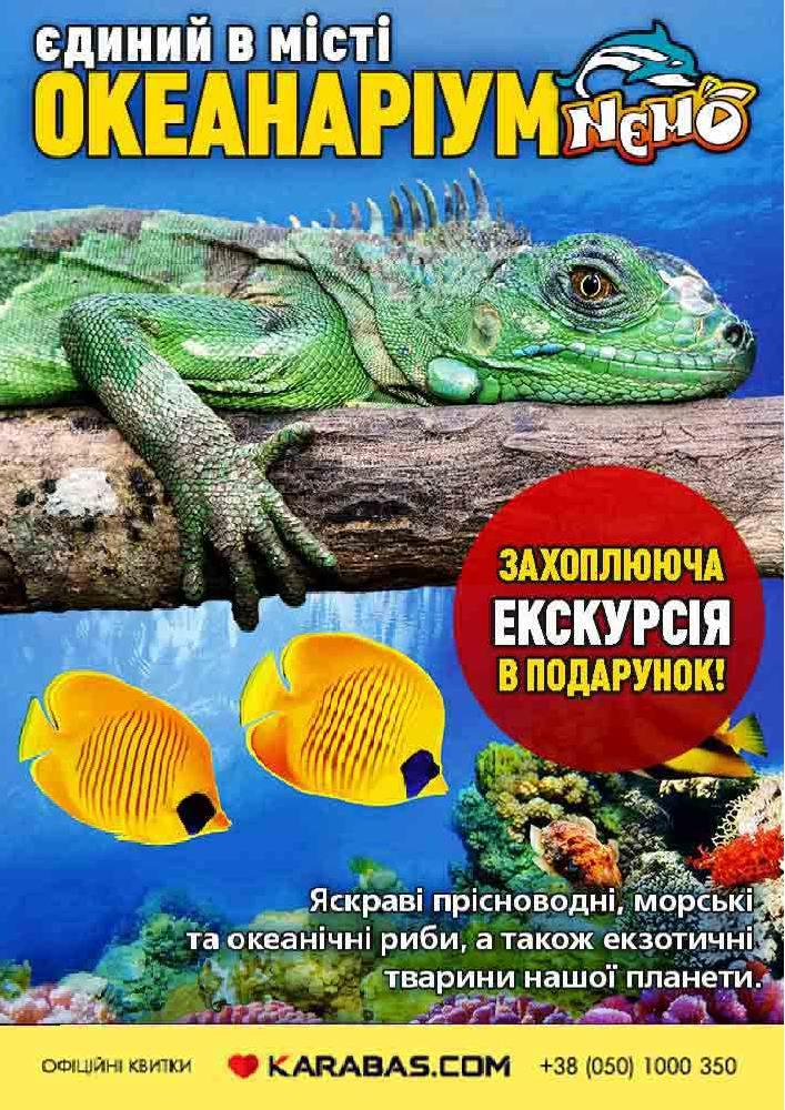 Купить билет на Океанариум «NEMO» в Харьковский дельфинарий «NEMO» Новый