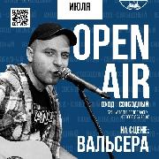 Open air концерт в исполнении Вальсера