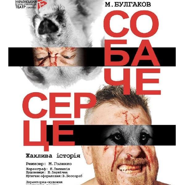 Собачье сердце (Украинский театр)