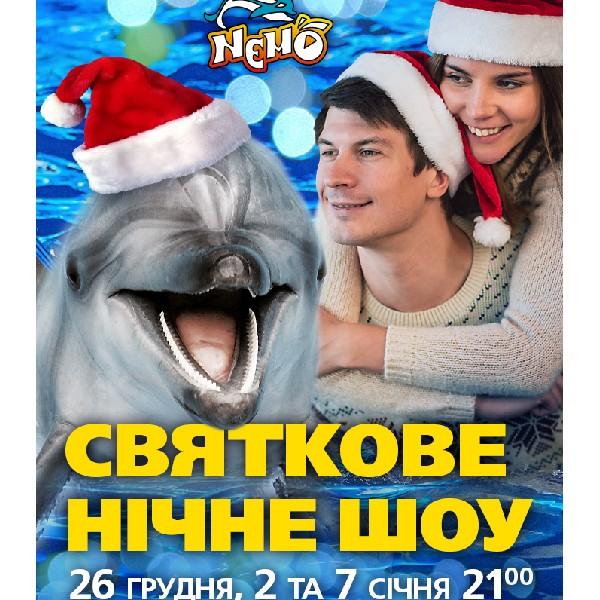 Новогоднее ночное шоу