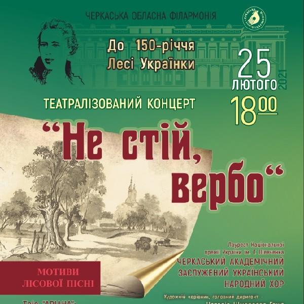 Театралізований концерт «Не стій Вербо»